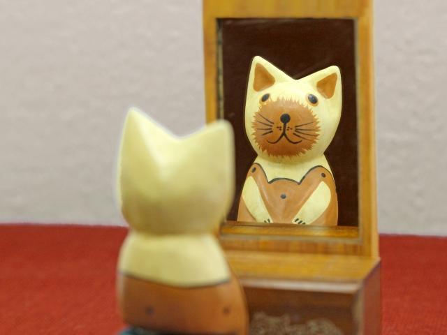 鏡を見る猫のイメージ画像